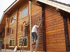 Методы защиты древесины от насекомых